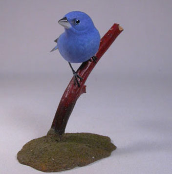 Indigo Bunting on branch #3