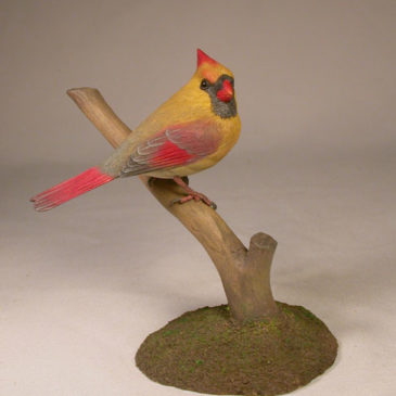4-5/8 inch Cardinal (female) #3 on branch