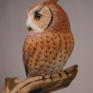 Life sized Eastern Screech Owl