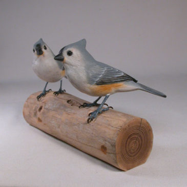 Tufted Titmouse Pair #3