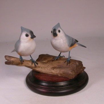 Tufted Titmouse Pair #2