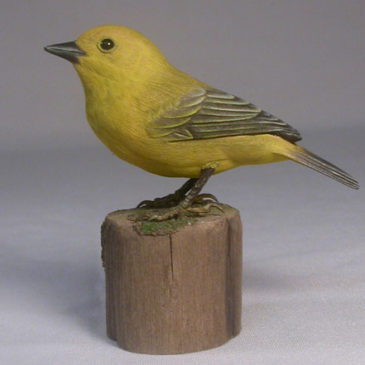 Yellow Warbler (Female) #1