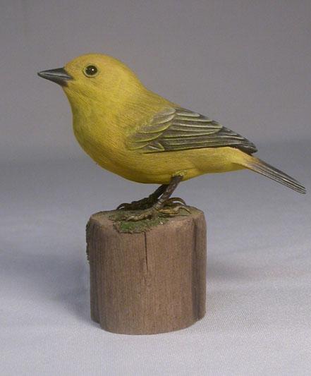 yellow-w-f1
