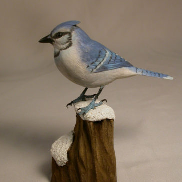 Mini 5 inches Blue Jay