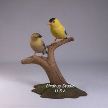 Pair of American Goldfinches (Male and Female) #2