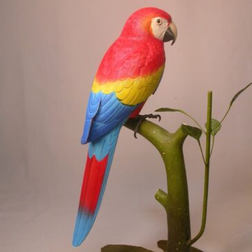 10 3/4″ Red and Gold Macaw